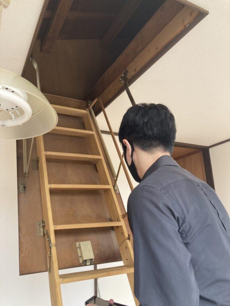屋根裏に登る時ワクワクするよね